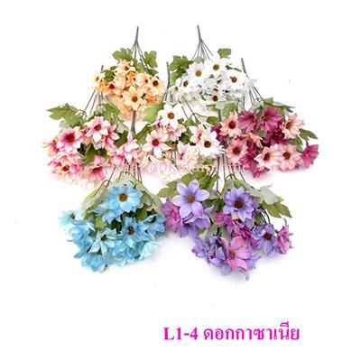 L1-4 ดอกกาซาเนีย