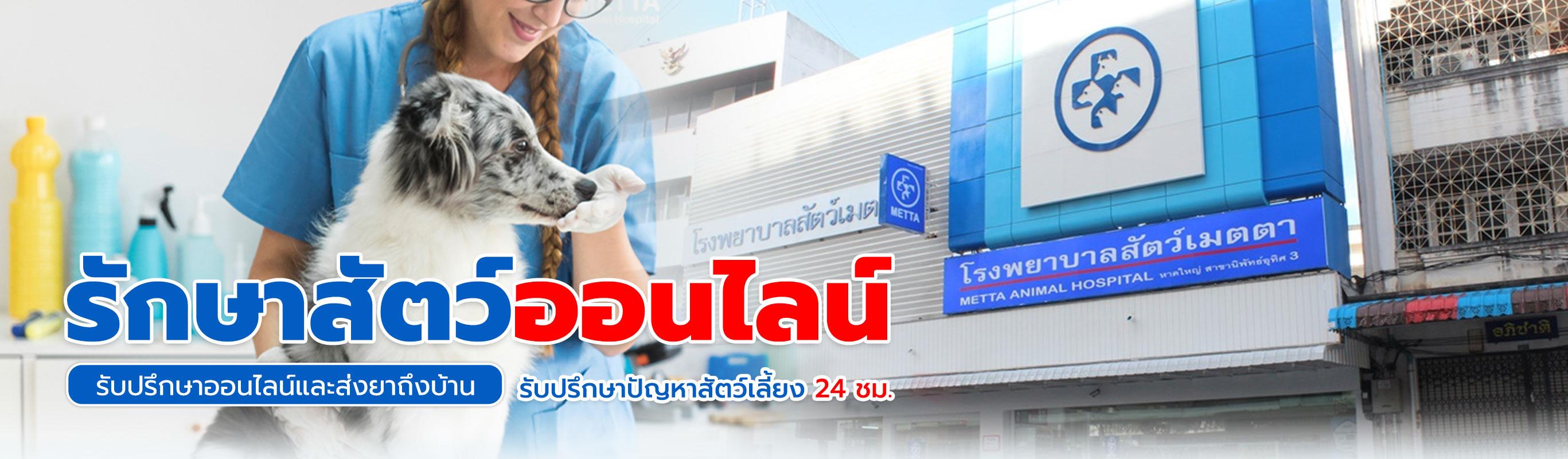 โรงพยาบาลสัตว์เมตตา สุราษฎร์ธานี