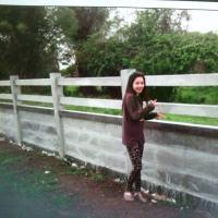 รั้วบ้านสำเร็จรูป