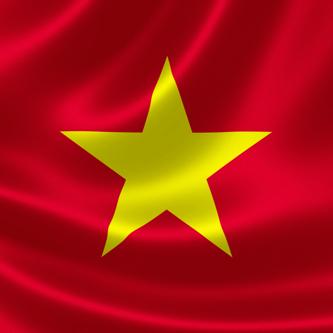 Center for Vietnamese translation