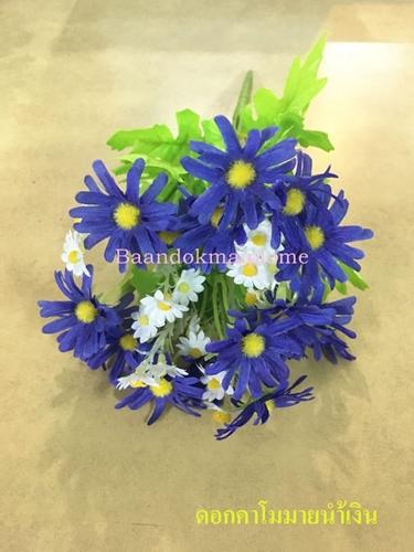 ดอกคาโมมายล์ สีน้ำเงิน