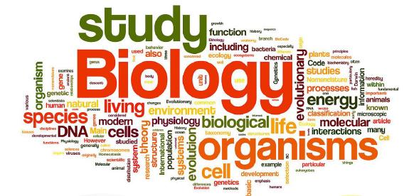 ติวสอบชีววิทยา