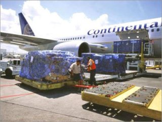 Dangerous Cargo Services