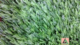 หญ้าเทียม XT Tencate Thiolon