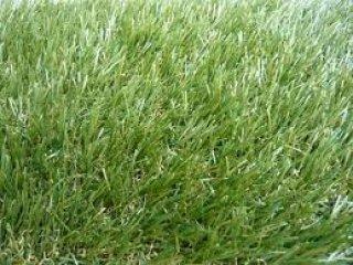 หญ้าเทียม 30 มม.