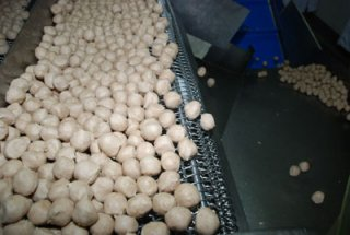 Meat Ball Wholesale