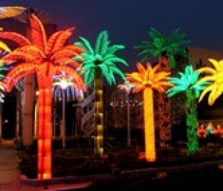 Coconut Tree Lights
