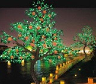 Fruit Tree Lights
