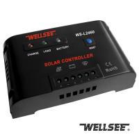 AUG Promotion WELLSEE WS-L2460 60A 12/24V Solar Street Light Controller