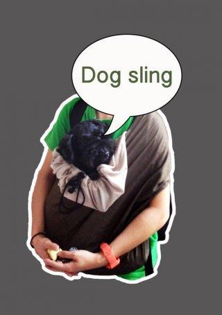 Bangkok dog sling