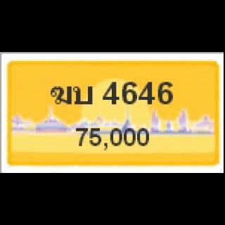ทะเบียนรถสวยเลขสลับ เลข 4646