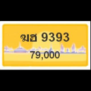 ทะเบียนรถสวยเลขสลับ เลข 9393