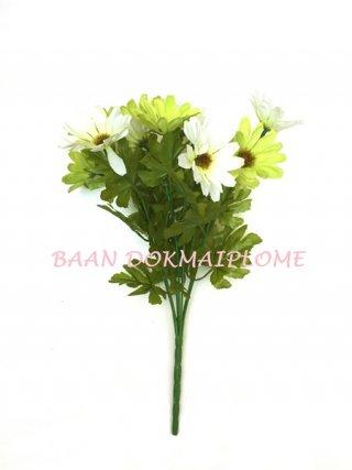 ดอกเยอบีร่า สีขาว-เขียว