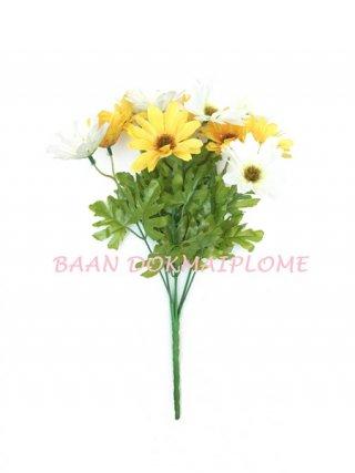 ดอกเยอบีร่า สีขาว-เหลือง