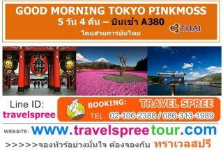 ทัวร์ญี่ปุ่น GOOD MORNING TOKYO PINKMOSS 5 วัน 4 คืน