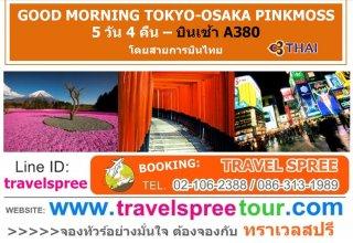 ทัวร์ญี่ปุ่น GOOD MORNING TOKYO-OSAKA PINKMOSS 5 วัน 4 คืน