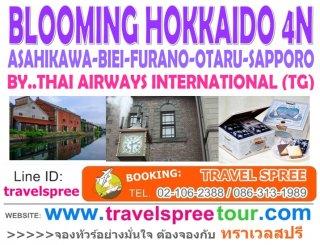 ทัวร์ฮอกไกโด BLOOMING HOKKAIDO (OBONG) 4 คืน
