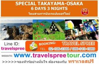 ทัวร์ทาคายาม่า SPECIAL TAKAYAMA-OSAKA 6 วัน 3 คืน