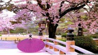 ทัวร์ญี่ปุ่น เดือนเมษายน 2559 / 2016