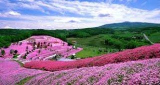 ทัวร์ญี่ปุ่น เดือนธันวาคม 2558 / 2015