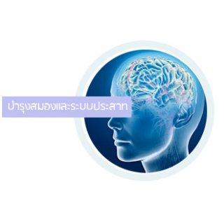 รับผลิตอาหารเสริมบำรุงสมองและระบบประสาท