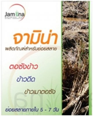 Jamina for Rice Straw Decomposition