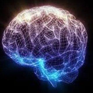 รับผลิตอาหารเสริมบำรุงสมอง
