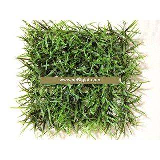 หญ้าแพรก 25*25 cm.