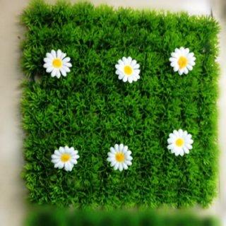 หญ้านวลน้อยดอกไม้ 25*25 cm.