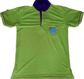แบบเสื้อโปโลสีเขียวปกดำ