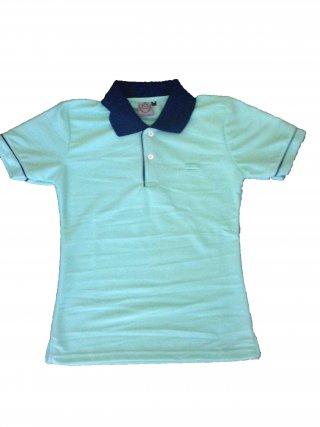 แบบเสื้อโปโลสีฟ้าปกสีกรม