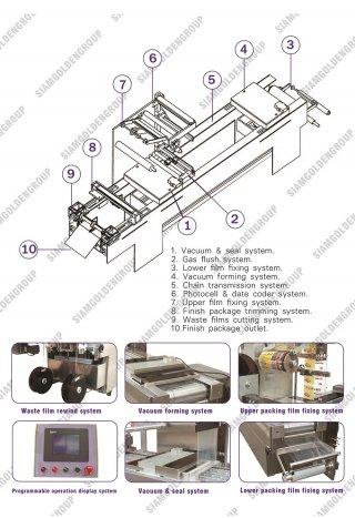 VACUUM THERMOFORMING MACHINE