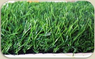 หญ้าเทียมรุ่น g8B ความสูงหญ้า 5 ซม.