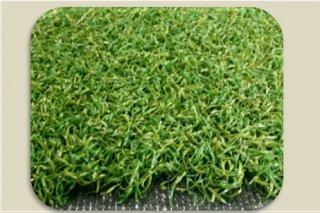 หญ้ากรีนพัตต์