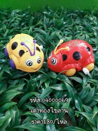 เต่าทองไขลาน รหัส 04000069