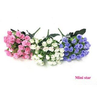 ดอก Mini star
