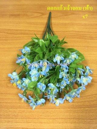 ดอกแก้วเจ้าจอม สีฟ้า