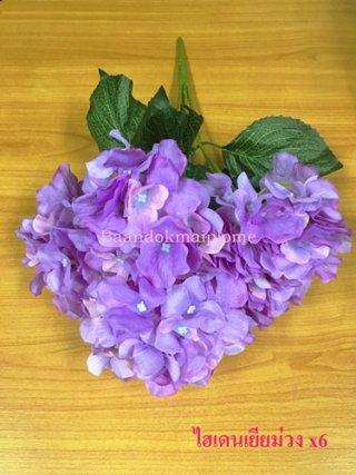 ดอกไฮเดนเยีย สีม่วง x6
