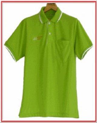 แบบเสื้อโปโลสีเขียวแถบขาว
