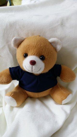 ตุ๊กตาหมีของทีระลึก