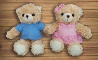 ตุ๊กตาหมีสีฟ้า