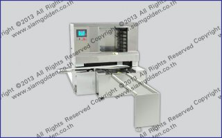 THE PENDULUM PLATE MACHINE ZR 598