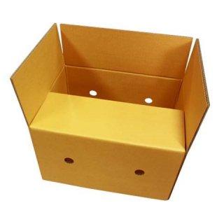 กล่องผลไม้ FTHS