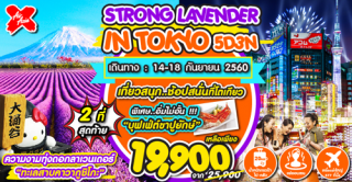 NRT19 STRONG LAVENDER IN TOKYO 5D3N BY XJ​