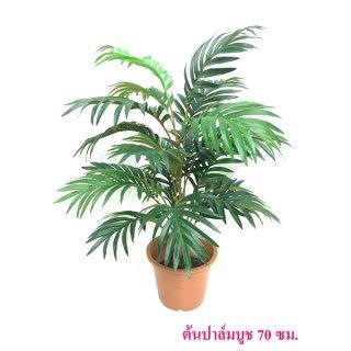 ต้นปาล์มบูช 80 ซม.