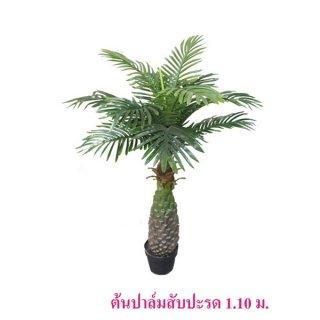 ต้นปาล์มสับปะรด สูง 1.10 ม.