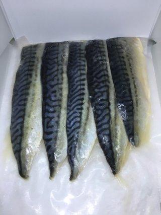 ปลาซาบะดองแล่