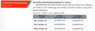 Cementtitious Waterproofing วัสดุกันซึม