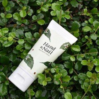 ครีมบำรุงมือ Hand Nail Treatment Cream