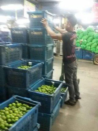 Thai Lemon Grower